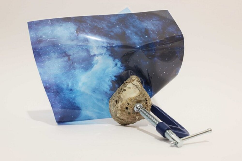 May Italian Art - Federica Di Carlo Out of the Blue, 2017 Morsa, conchiglia fossile, acetato/Clamp, fossil shell, acetate 33 x 30 x 20 cm