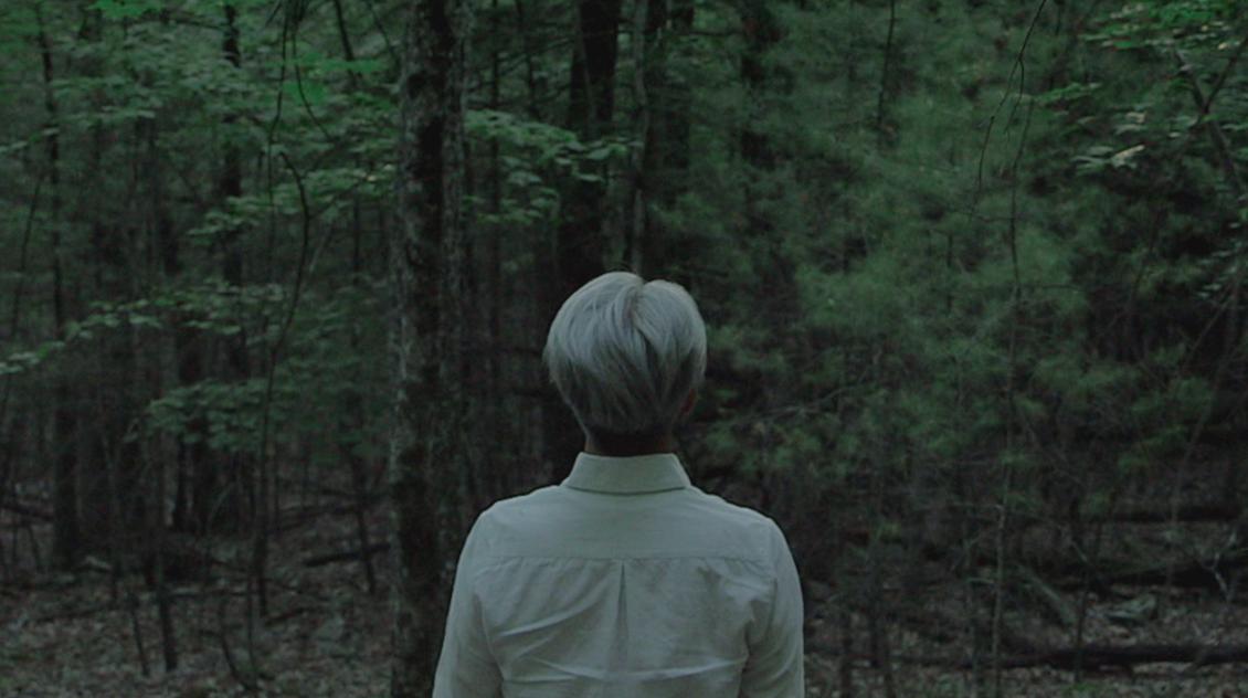 RyuichiSakamoto, documentario in streaming per laGiornataMondiale per l'Ambiente