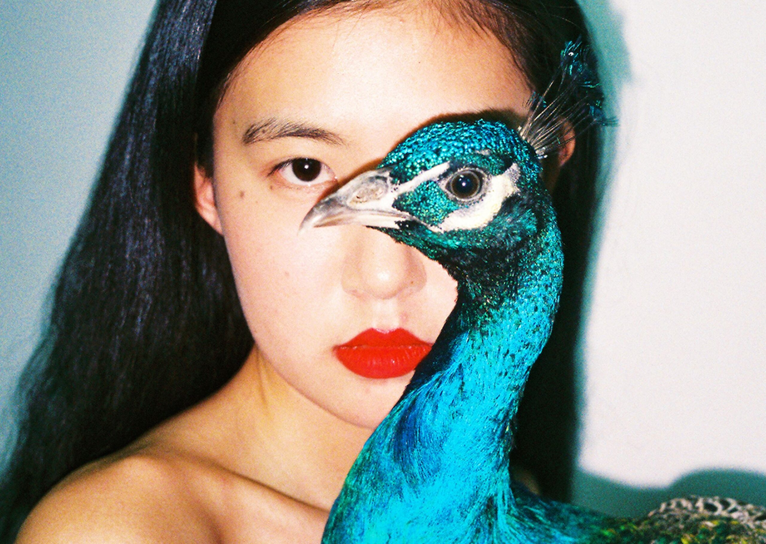 Pavoneggiamenti. Tutti pazzi per il filtro Peacock di Ren Hang, profusione di polli blu elettrici su Instagram