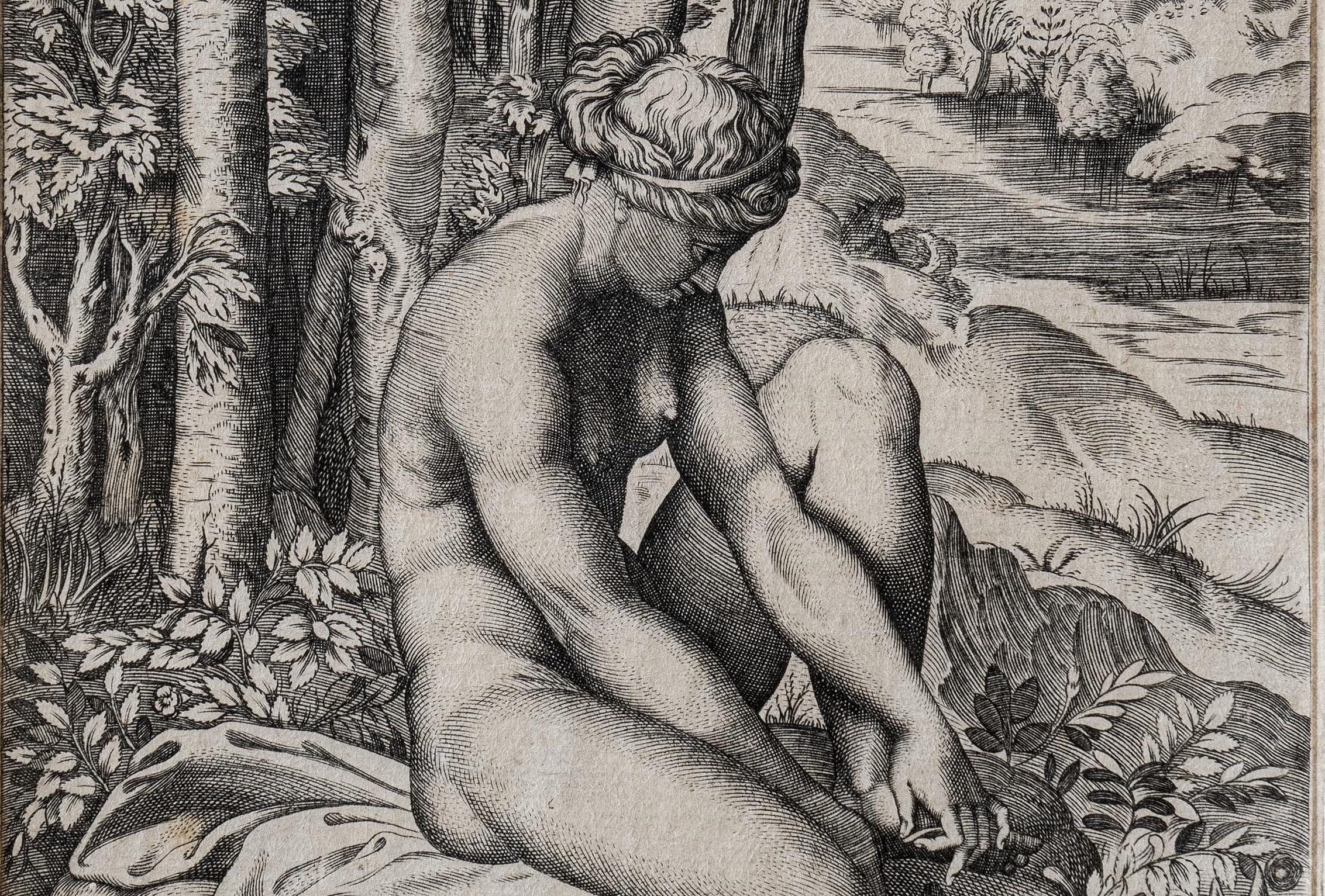 La fortuna visiva di Raffaello nella grafica del XVI secolo. La mostra a Bologna