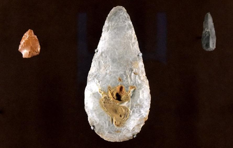 Rarità archeologiche. Alla nuova Pilotta di Parma arriva il bifacciale acheulano, gioiello del paleolitico