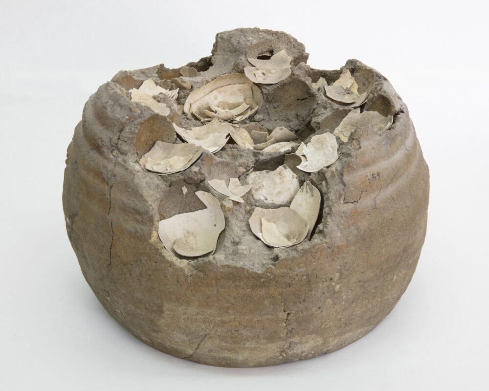 Contenitore con uova conservate nell'argilla. Parco Archeologico di Pompei. © Amedeo Benestante