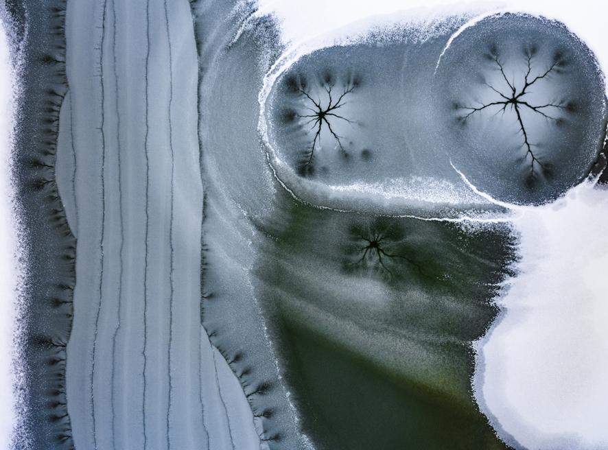 Le arti visive in dialogo con la bellezza della natura. In scena a Biella l'ottava edizione di Selvatica