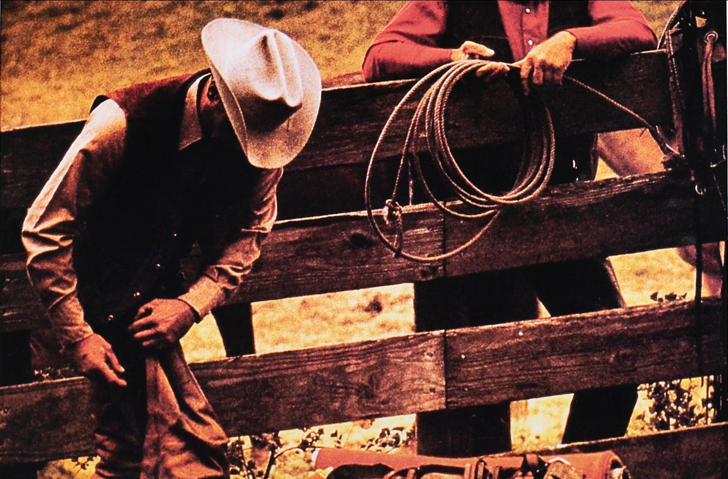 Dai nudi di Helmut Newton ai Cowboys di Richard Prince. Fotografia all'asta da Finarte