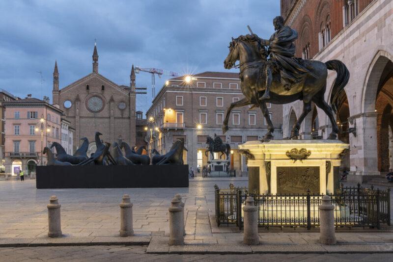 PaladinoPiacenza, foto di Lorenzo Palmieri