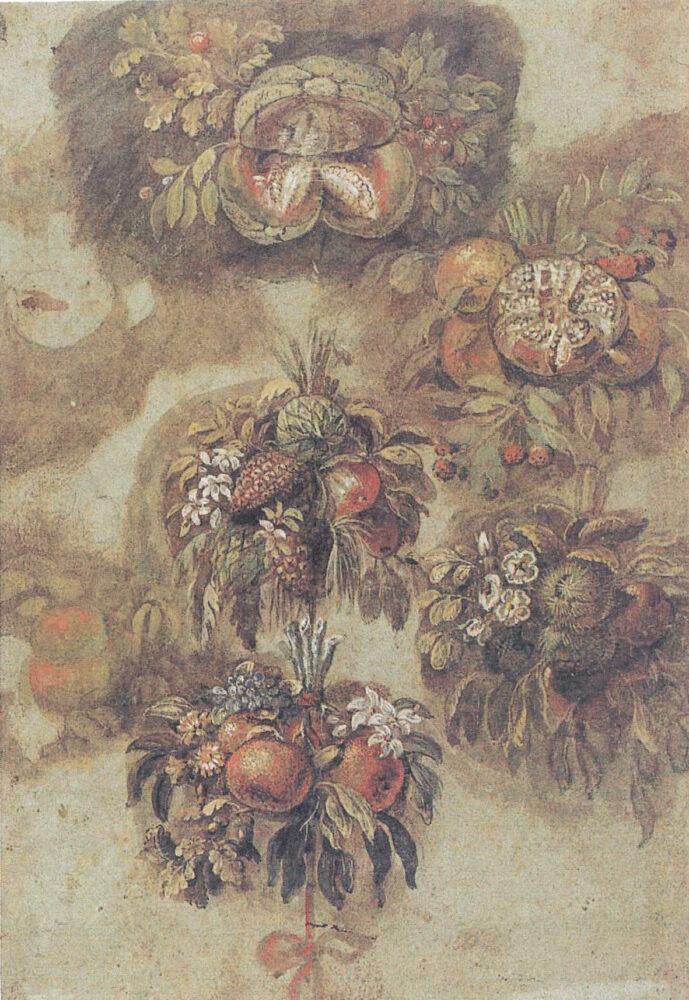 Giovanni da Udine Studi di mazzi di fiori e frutti. Penna e inchiostro bruno, acquarellato con pigmenti colorati e lumeggiato in bianco, 292x200 mm. Vienna, Albertina