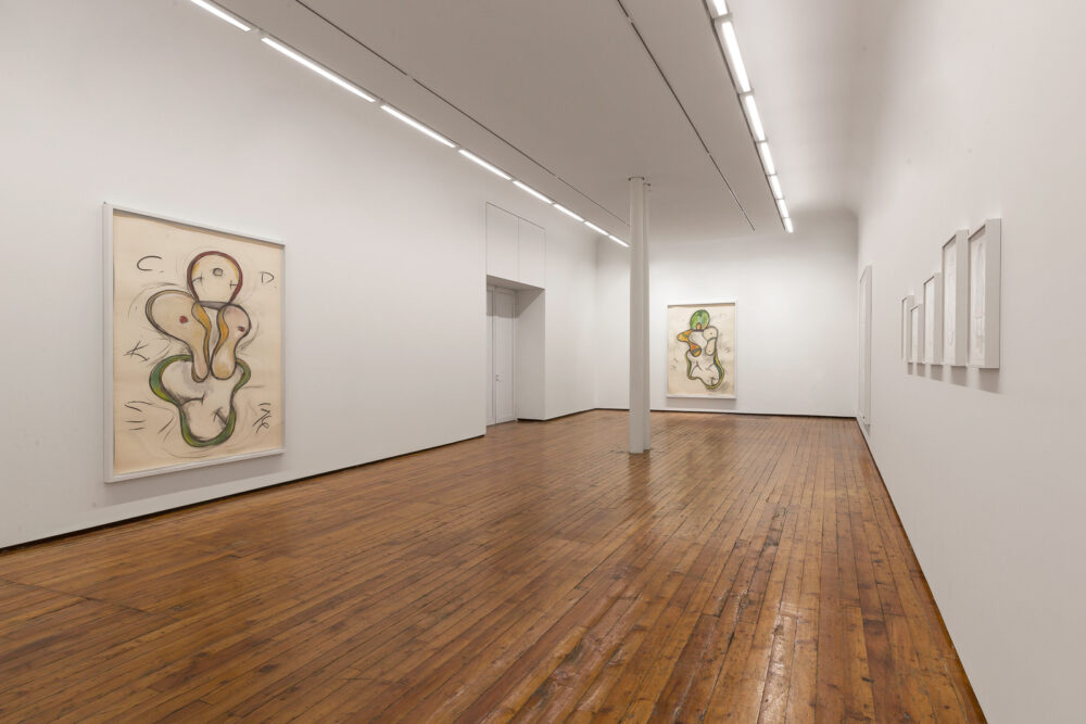 Keith Sonnier. Cat Doucet Drawings, Galleria Fumagalli, Milano 2020. Photo Lucrezia Roda. Courtesy Galleria Fumagalli_002_WEB