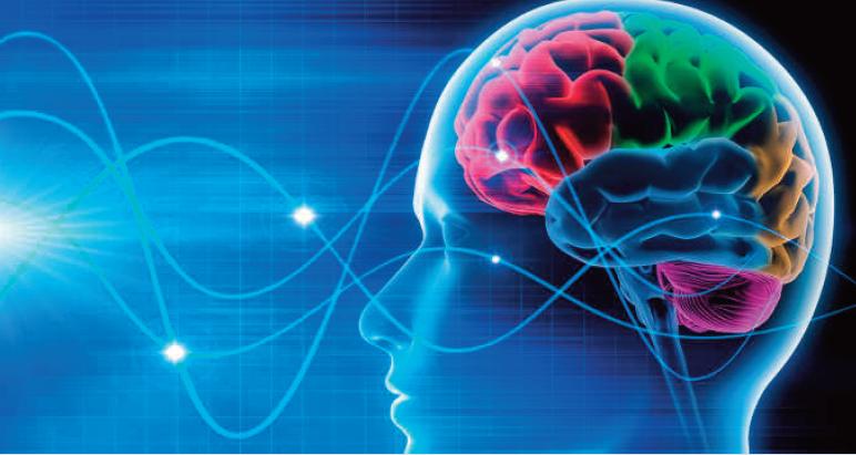 Il nuovo progetto 'Human Brains' di Fondazione Prada: tutto il mondo unito tra neuroscienze e cultura