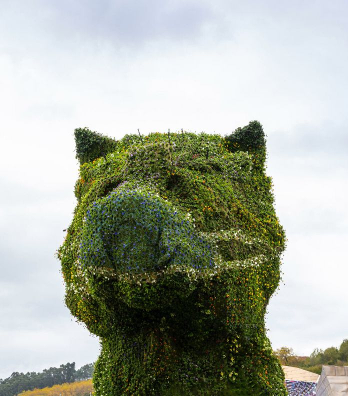 Jeff Koons mette la mascherina a Puppy, la scultura floreale del Guggenheim di Bilbao