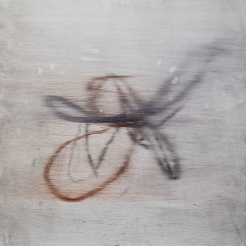 Luca Caccioni, Ibisco e dita, ( burle e marx garden ), 2020, olio su alluminio, cm 80x80