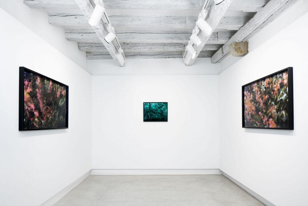 Oltrenatura, installation view, room2