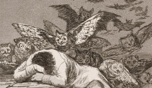 Francisco Goya, ragione e fantasia