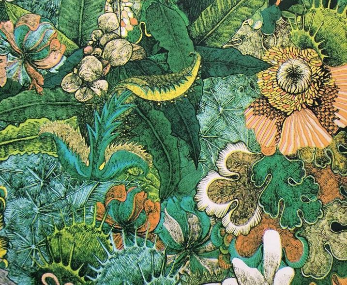 Il giro del mondo in 80 piante: l'arte della biodiversità