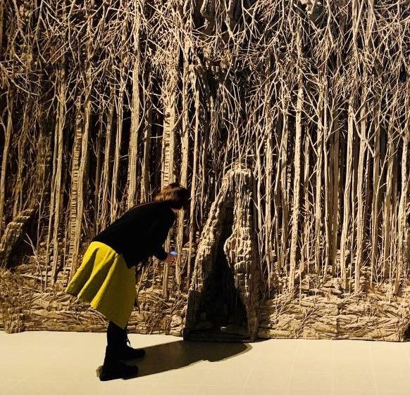 Tutto il potenziale creativo del cartone: le misteriose foreste di Eva Jospin