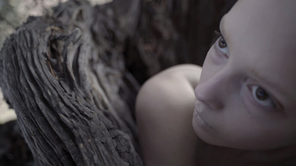 The Next Generation Short Film Festival