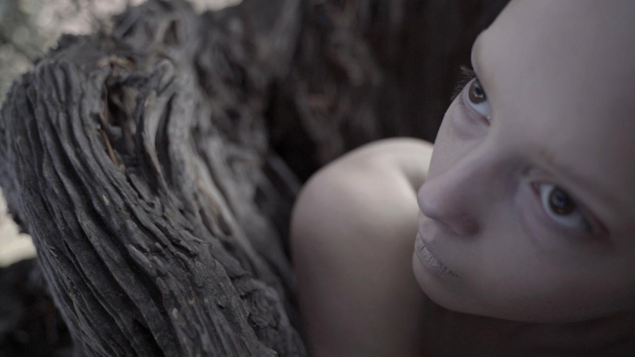 Film d'artista e cortometraggi, al via The Next Generation Short Film Festival