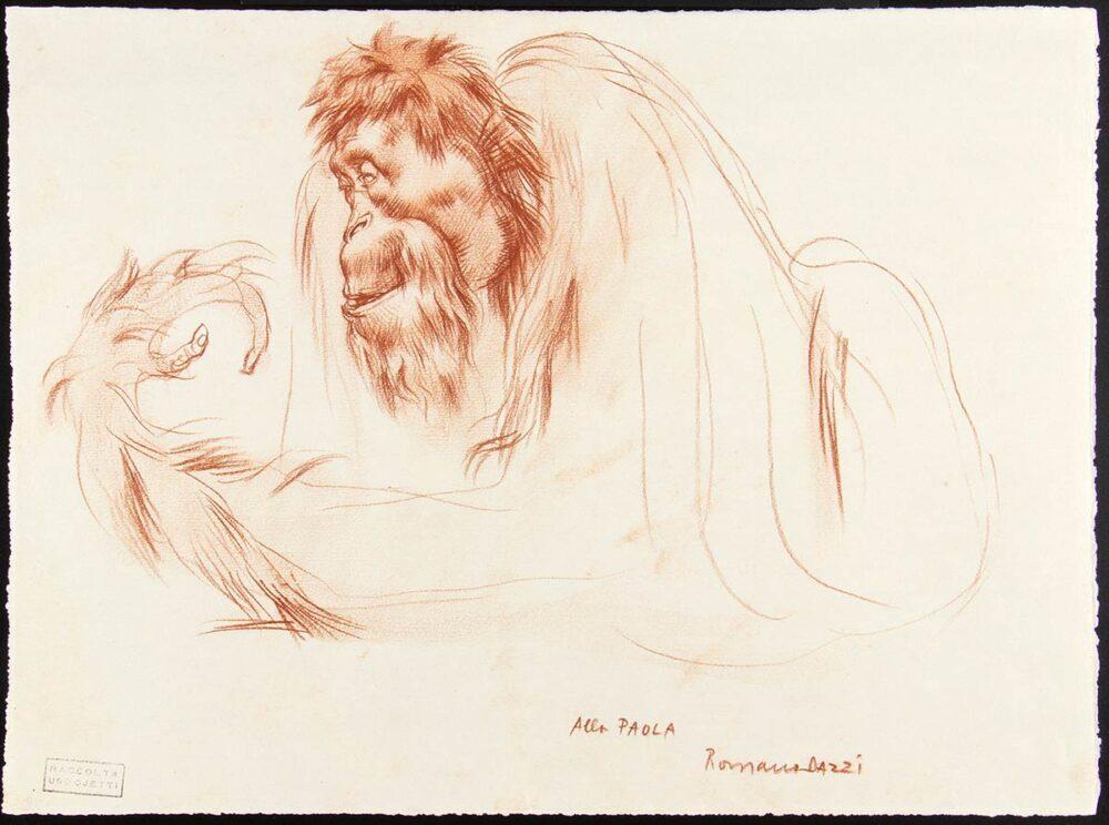 Gli animali: ROMANO DAZZI, Studio di orango, 1919-20 Carboncino su carta PROVENIENZA: Collezione Ugo Ojetti. Lotto 236 dell'Asta 88 Bertolami Fine Art – Roma, 26 febbraio 2021