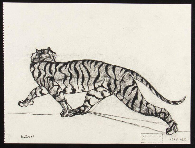 ROMANO DAZZI, Studio di tigre, 1925 Carboncino su carta PROVENIENZA: Collezione Ugo Ojetti. Lotto 238 dell'Asta 88 Bertolami Fine Art – Roma, 26 febbraio 2021