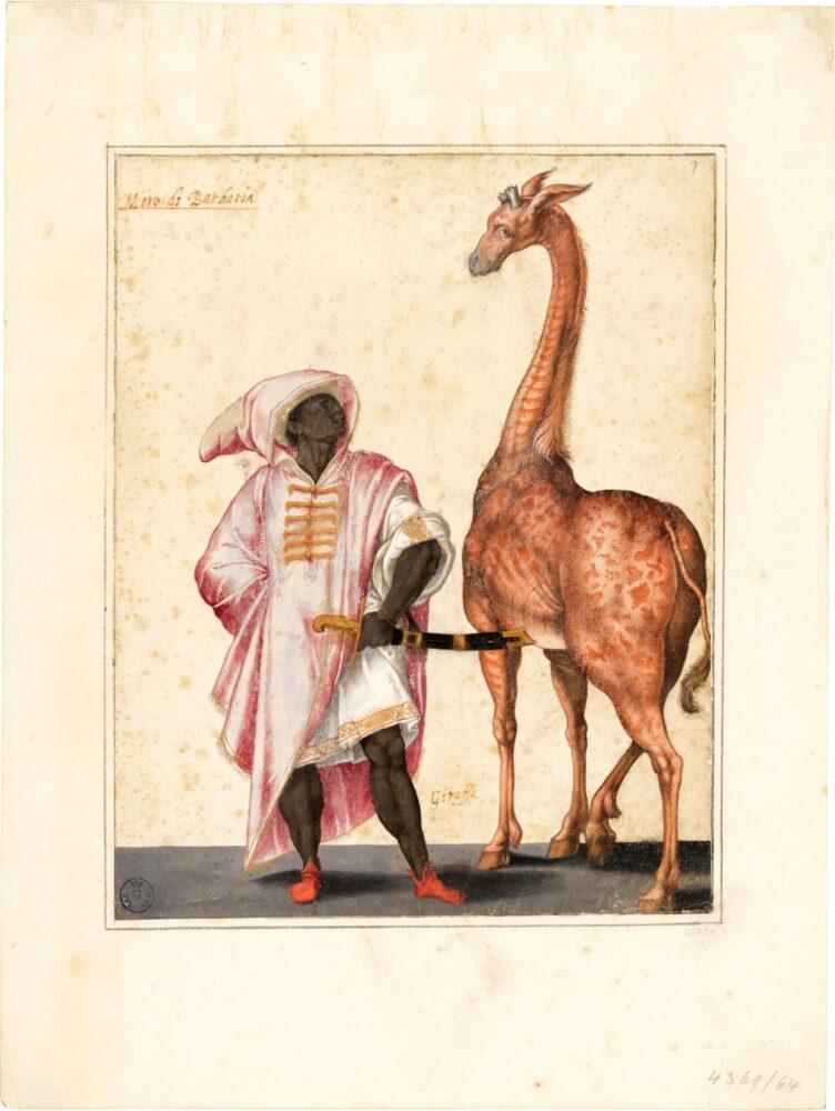 Uffizi On Being Present Moro di Barbaria con giraffa, Jacopo Ligozzi, 1580 circa