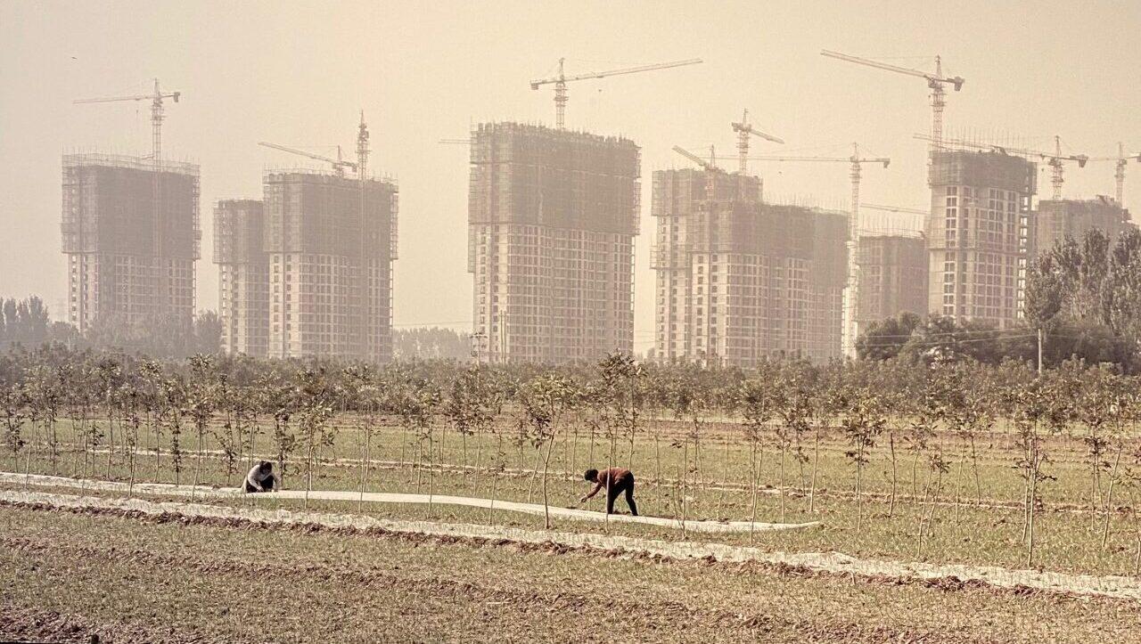 China Goes Urban riapre al MAO di Torino: il coraggio di parlare di Cina e urbanizzazione in tempi di Covid