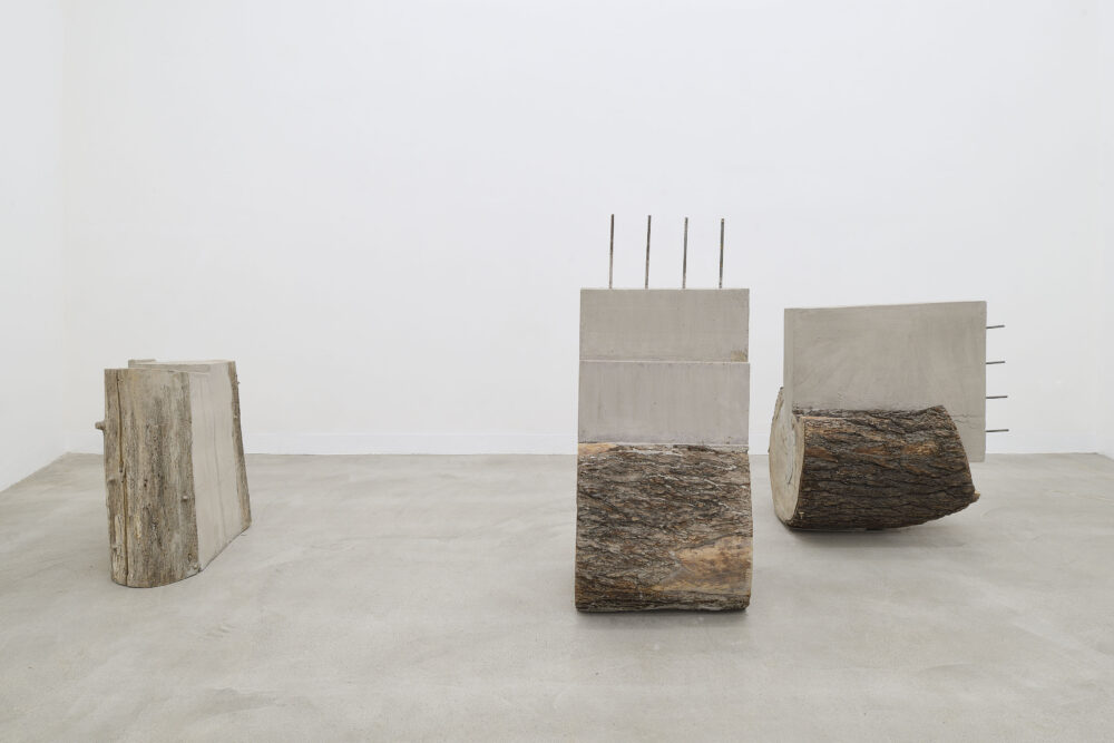 Stefano Canto, Carie, 2021, installation view at Matèria - Courtesy the artist and Matèria Roma, ph. Roberto Apa