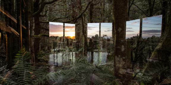 SUNDAY, 2020 - Digital photography per Shelter project 2020, Multicultural Arts Victoria Australia - Courtesy l'artista