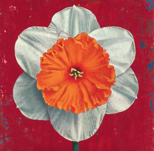 Libri di primavera, in libreria le nuove uscite dedicate alla natura e all'arte