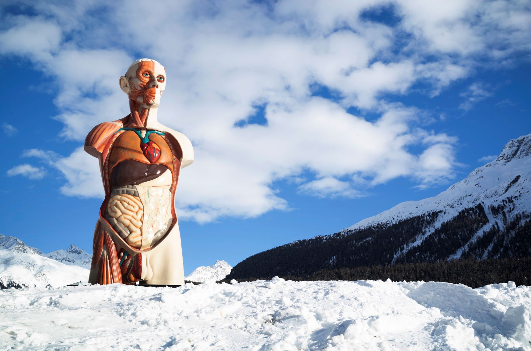 Maestosa e scenografica. La mega mostra di Damien Hirst a Sankt Moritz, le immagini
