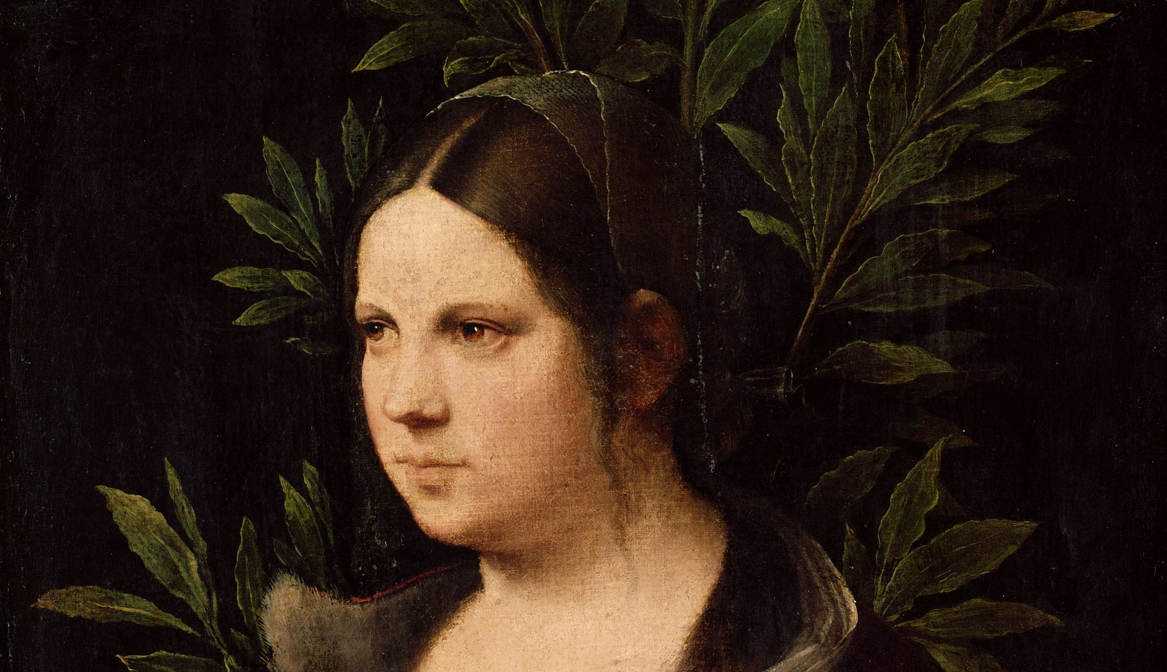 Fascino ed eterna curiosità: le misteriose opere di Giorgione svelate da Tom Nichols