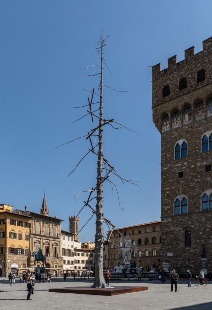 Giuseppe Penone, Abete, Piazza della Signoria, Firenze© photo OKNOstudio