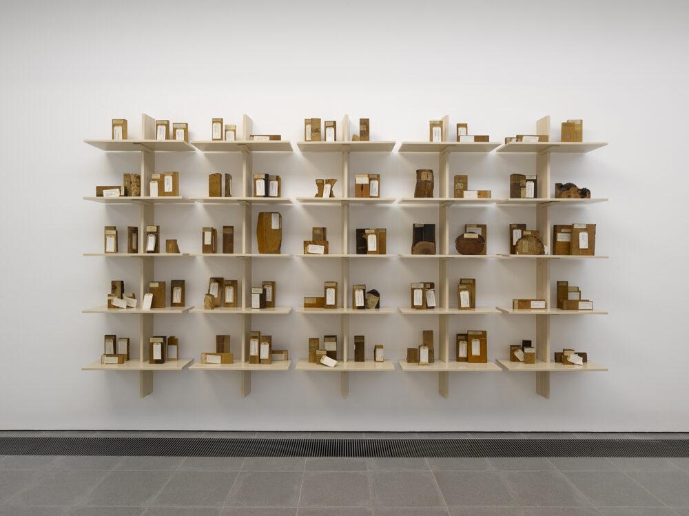 Forma f antasma, Cambio (Installation view, Serpentine Galleries, 2020). Photo credit: George Darrel