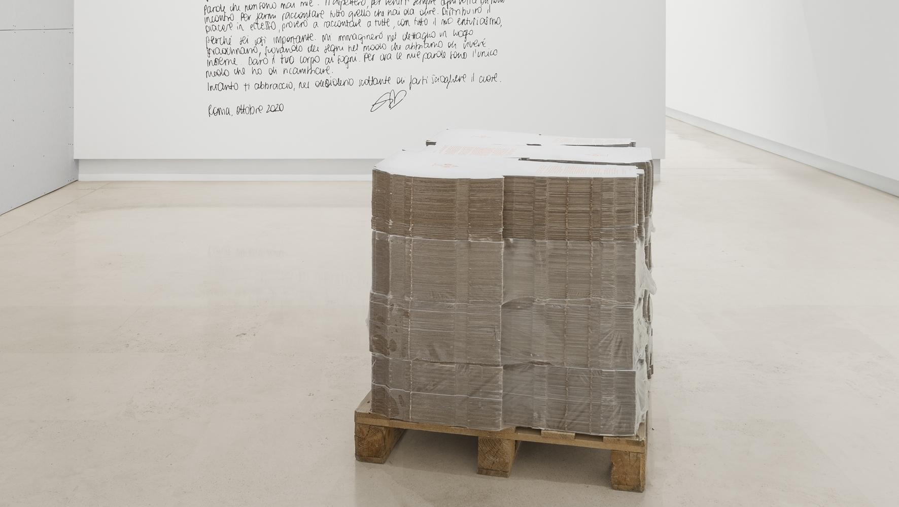 Giulia Crispiani vince il Premio Giovani Collezionisti per Quadriennale d'arte 2020