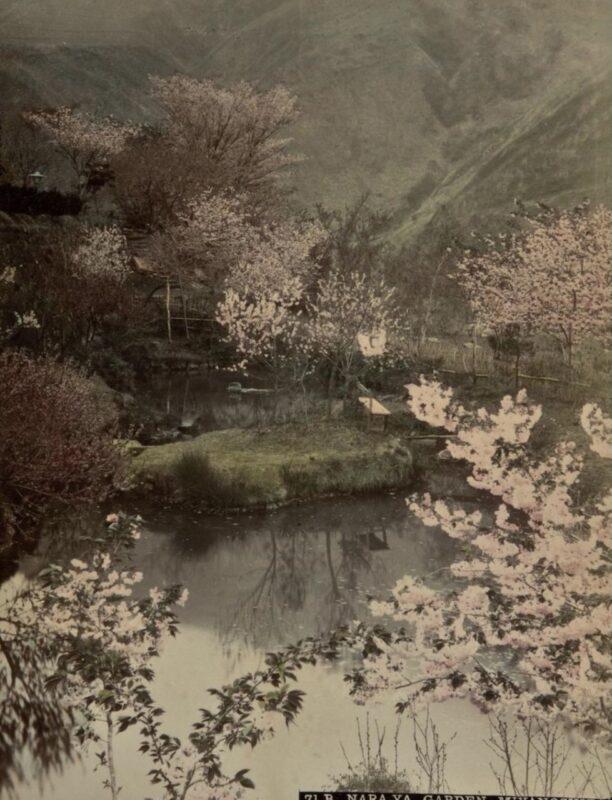 Anonimo, Nara-ya Garden Miyanoshita, 1890 ca Copyright © MUSEC / Fondazione Ada Ceschin e Rosanna Pilone