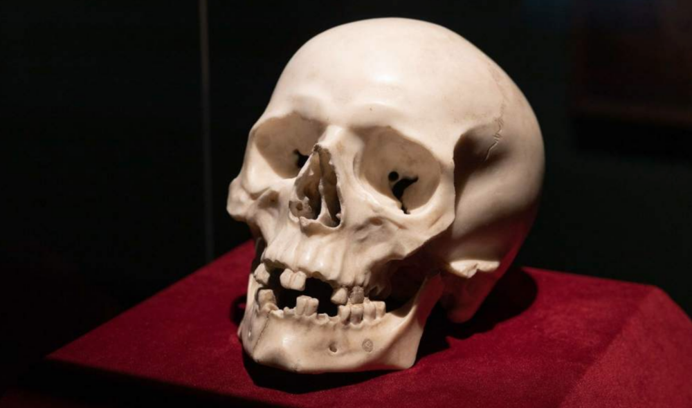 Il teschio opera di Gian Lorenzo Bernini