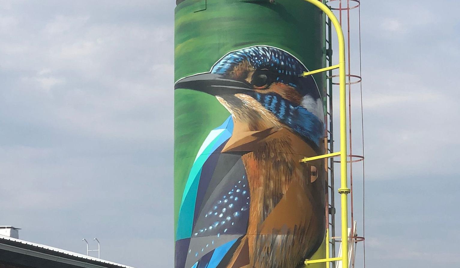 Il Lawyer Urban Artist Frode vola in Finlandia sulle ali del Kingfisher