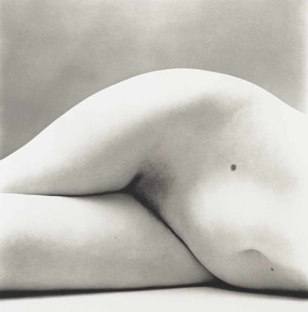 Irving Penn, Nude No. 147, 1950, 20,000 - 30,000 EUR_©The Irving Penn Foundation
