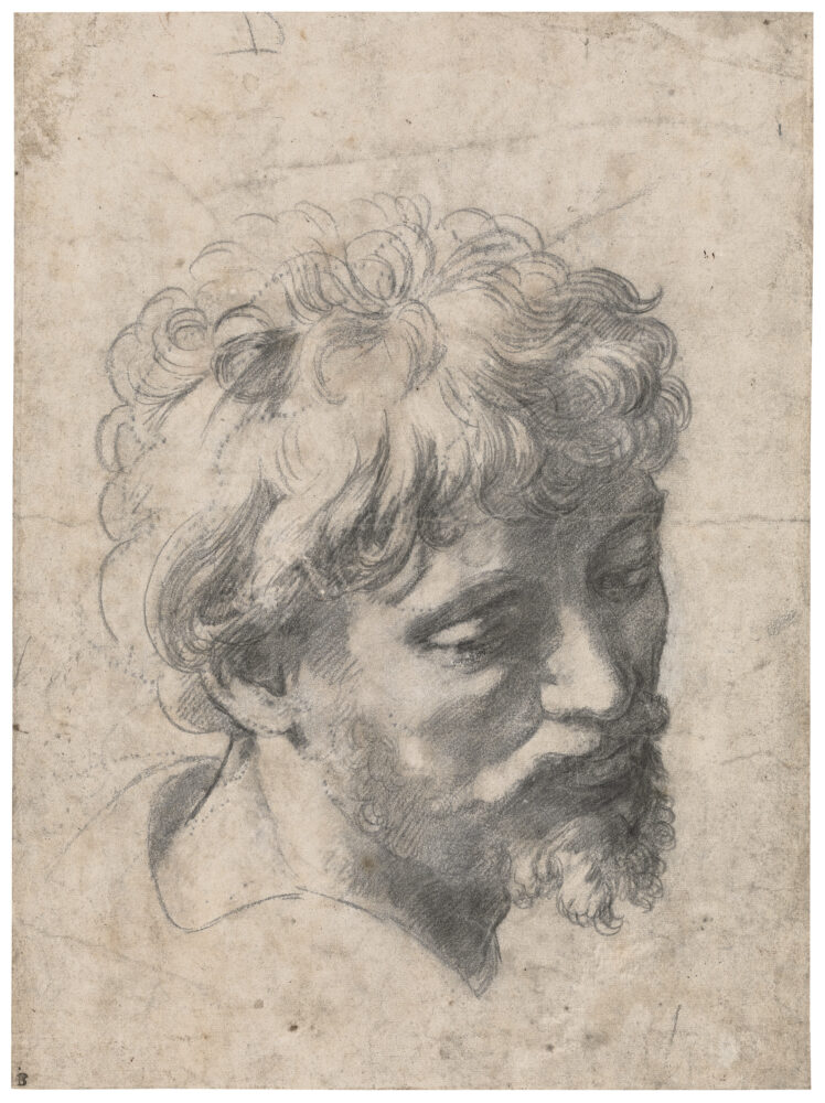 Raphael, Study for the Head of an Apostle in the Transfiguration © Private Collection