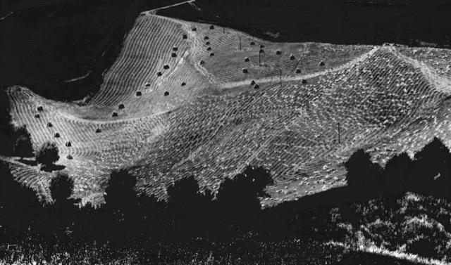 Giacomelli e Burri, il paesaggio in dialogo con l'Informale. La mostra itinerante tra Senigallia, Roma e Città di Castello