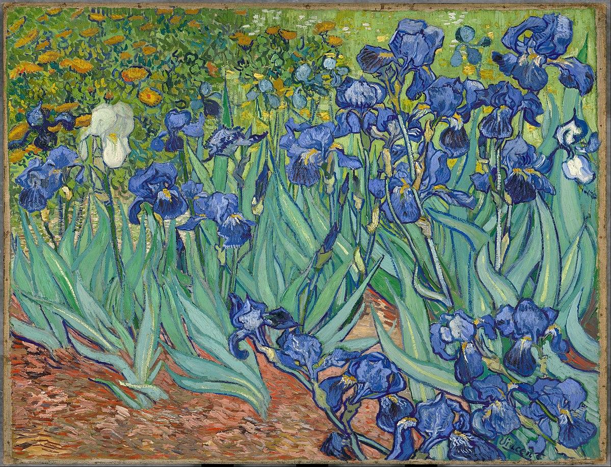 """Dentro Van Gogh. Il magico quadro """"Iris"""" visto da vicinissimo nel video del Getty Museum"""