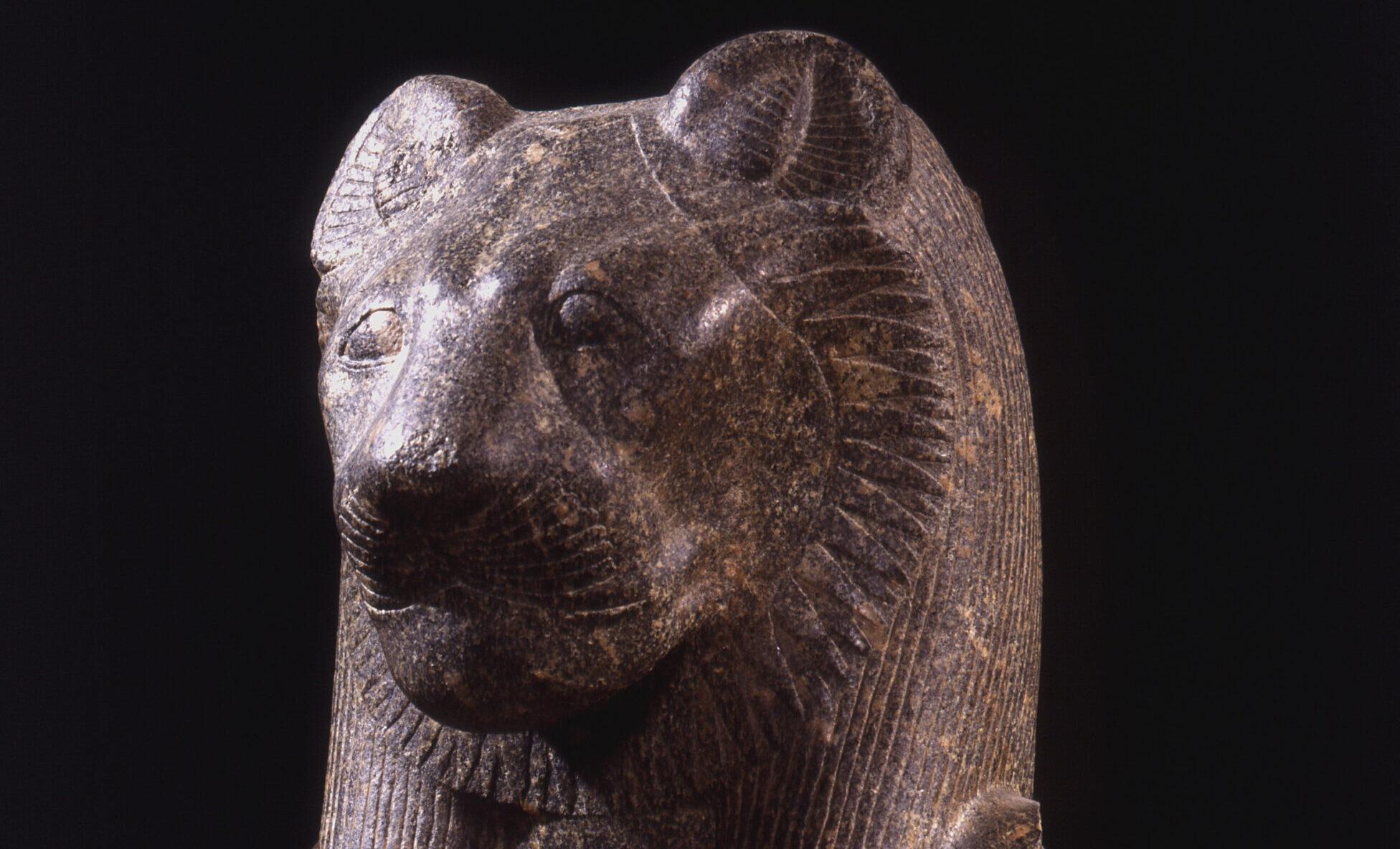 Una leonessa in città. L'eccezionale statua di una divinità egizia al Museo Archeologico di Bologna
