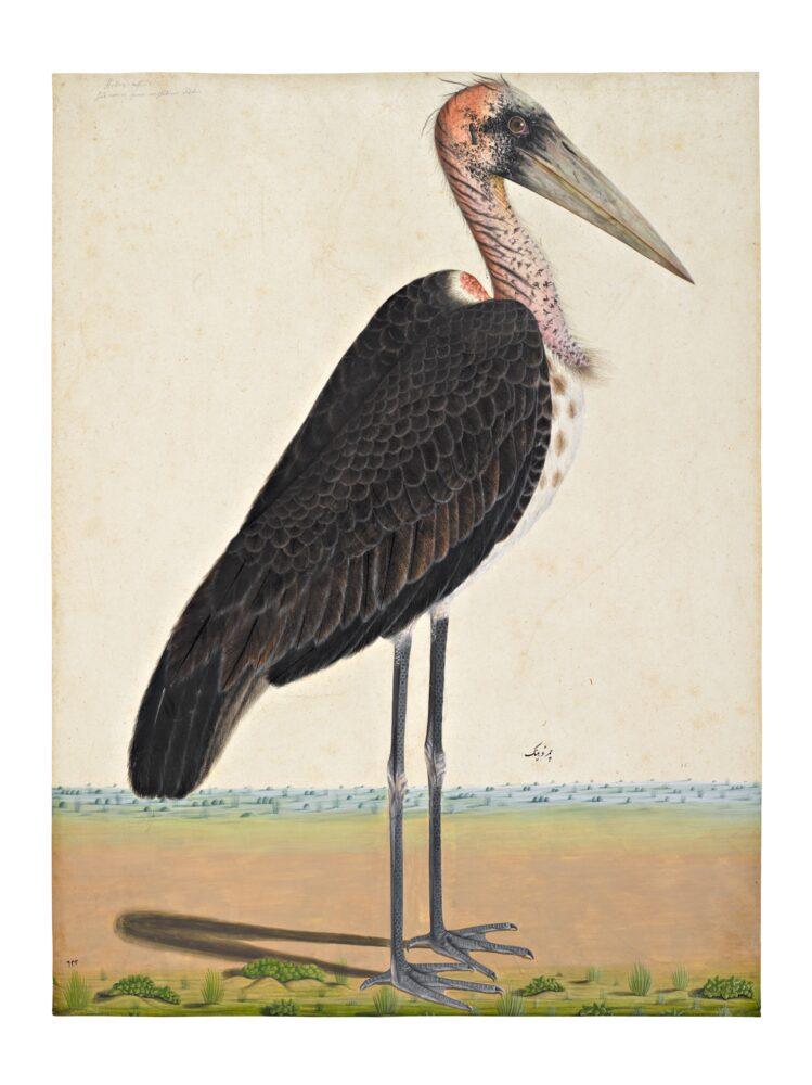 A Lesser Adjutant Stork (Leptoptilos Javanicus) In a Landscape, Company School, Lucknow, circa 1775-85 (est. £60,000-80,000)